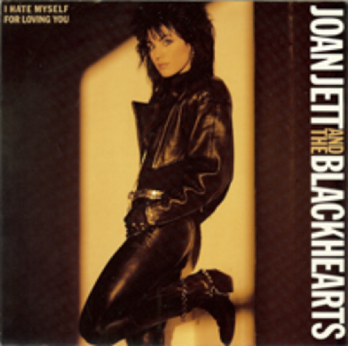 Joan Jett and The Blackhearts picture sleeve