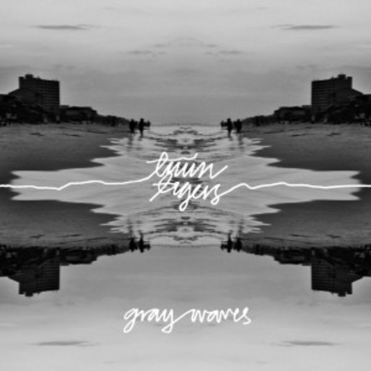 TwinTigers_GrayWavesCover