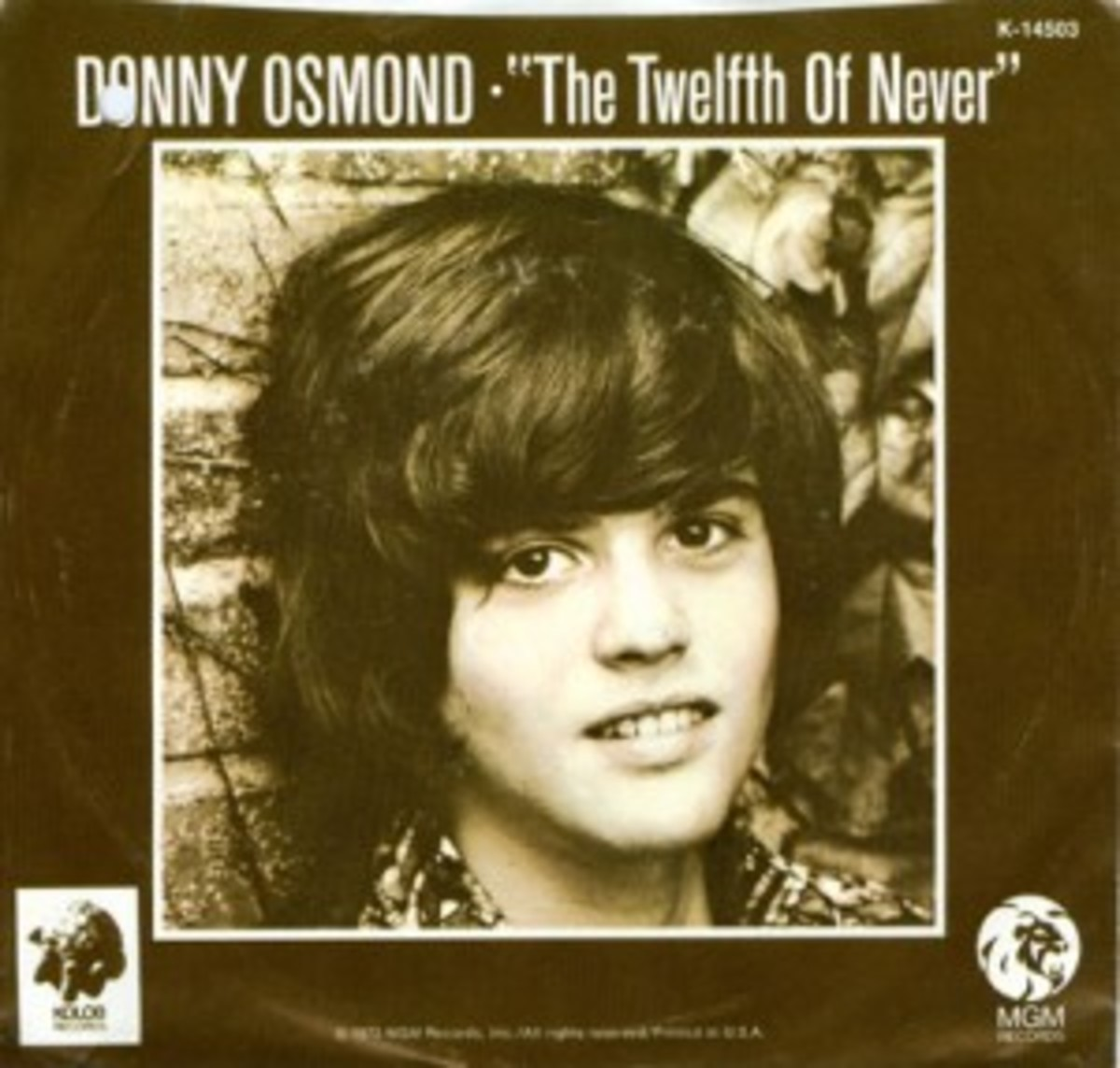 Donny Osmond The Twelfth of Never picture sleeve