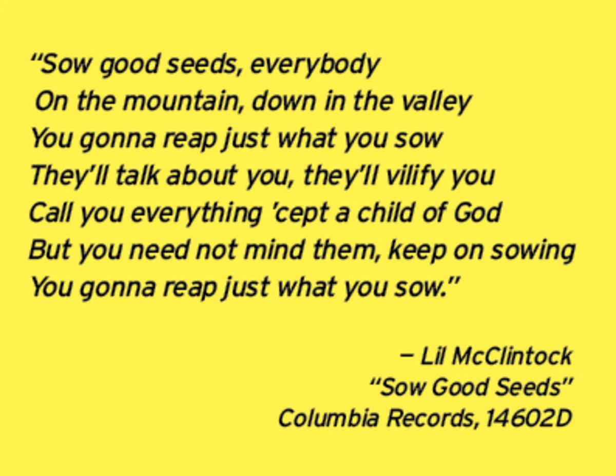 SowGoodSeesLyrics_LilMcClintock