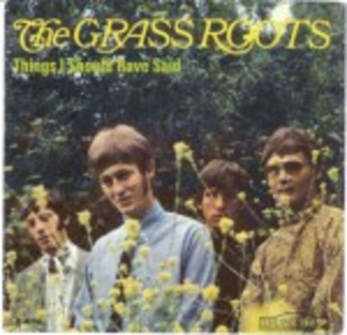 Grass Roots Things I Should Have Said picture sleeve