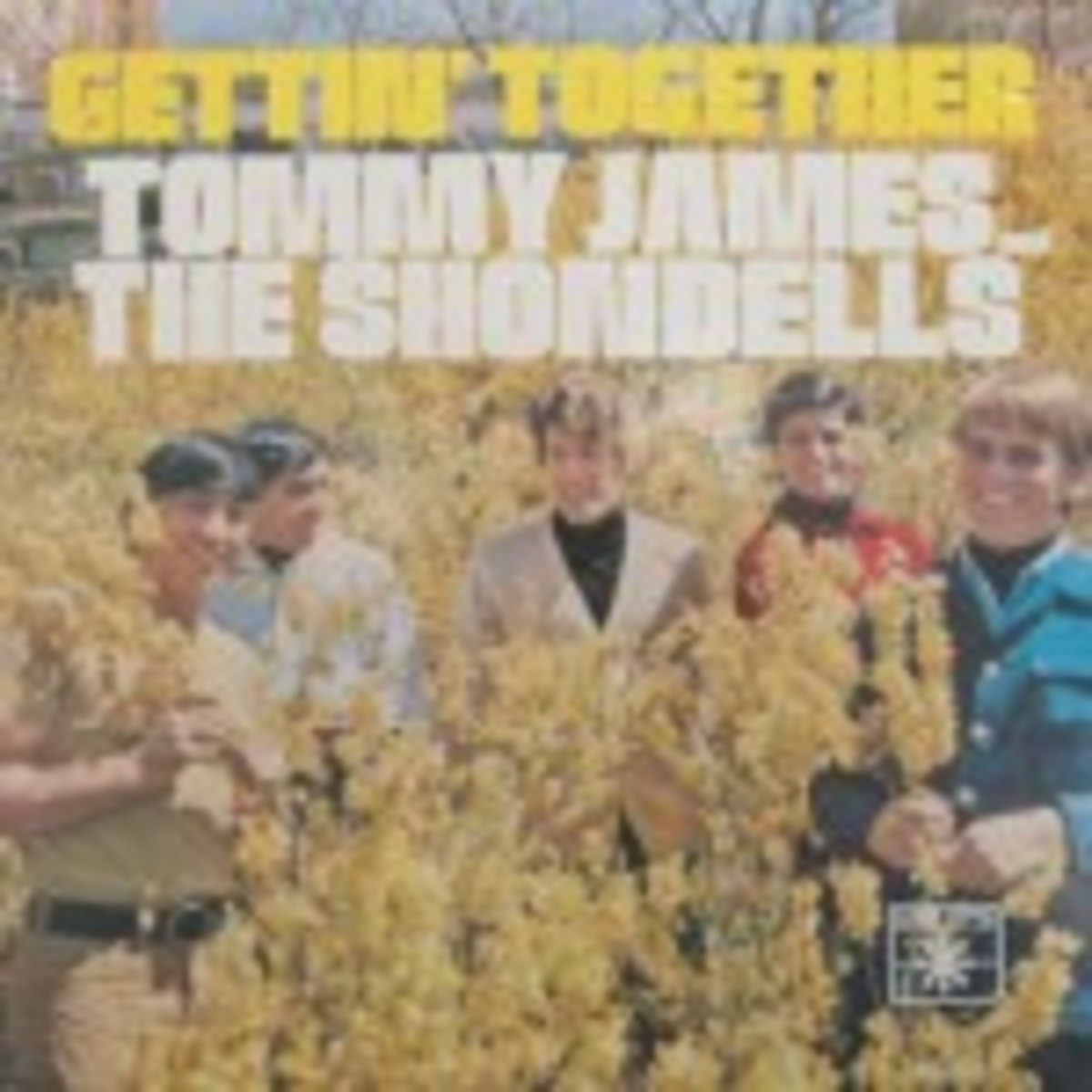 Tommy James and the Shondells Gettin Together picture sleeve