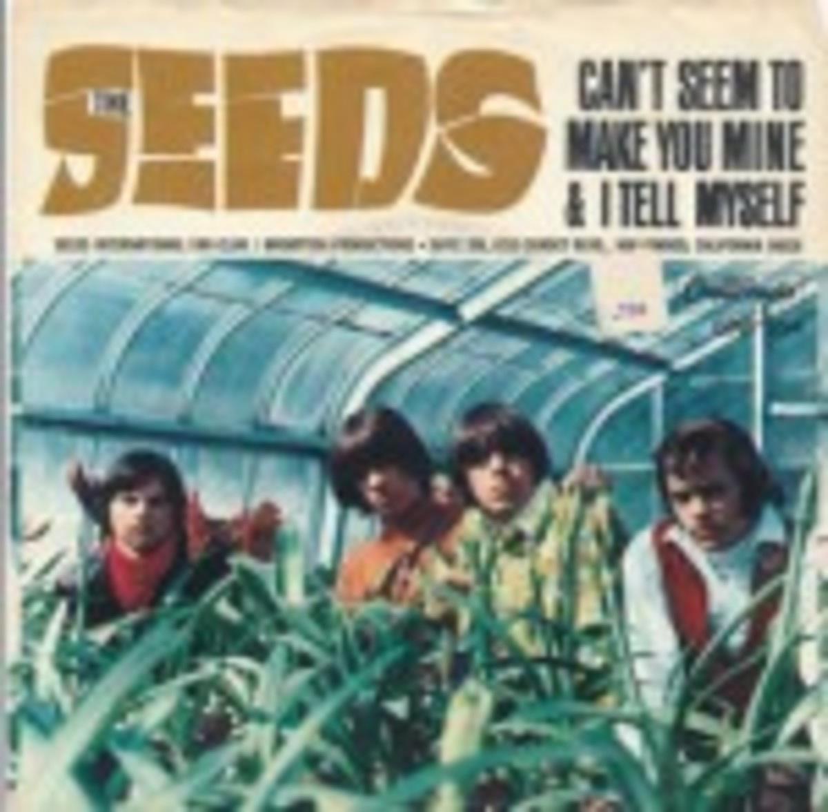 The Seeds Can't Seem To Make You Mine picture sleeve
