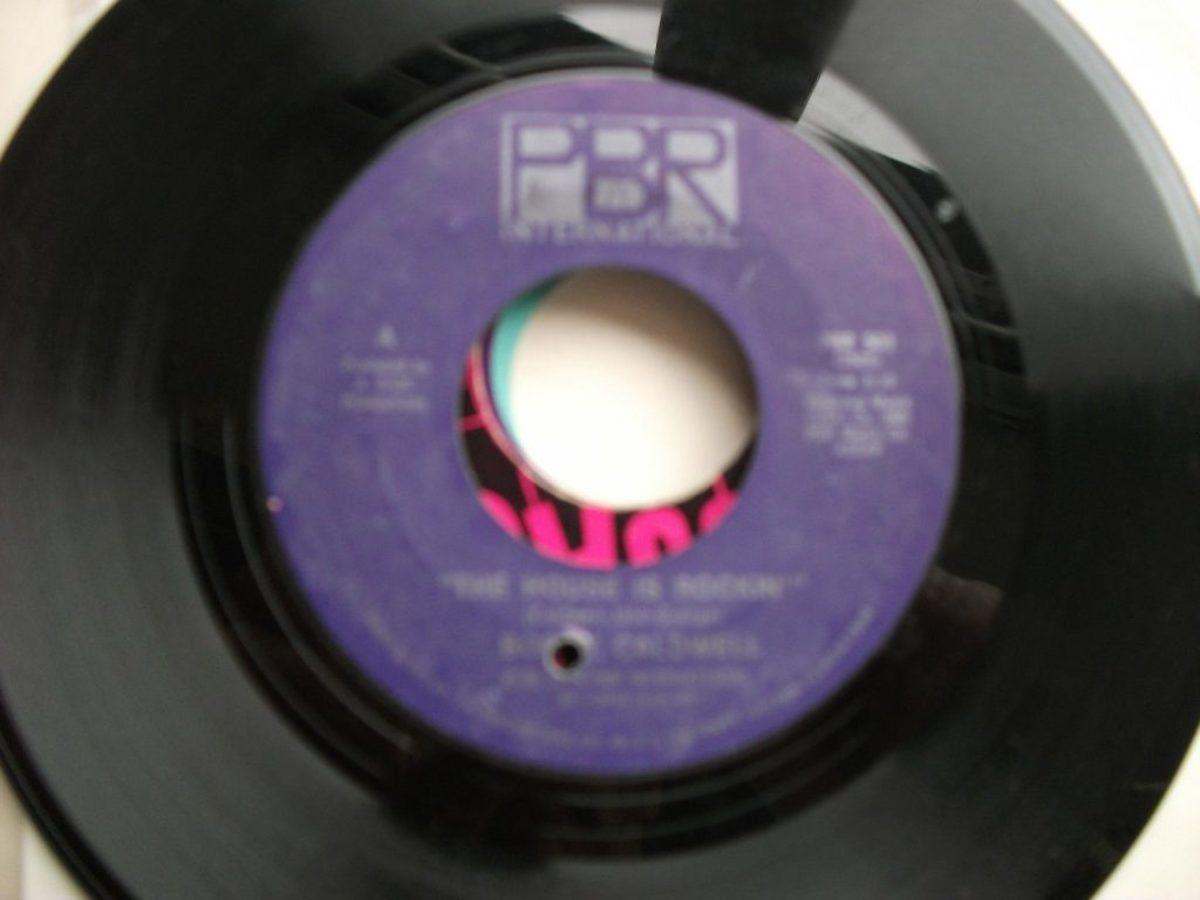 pbr-disco
