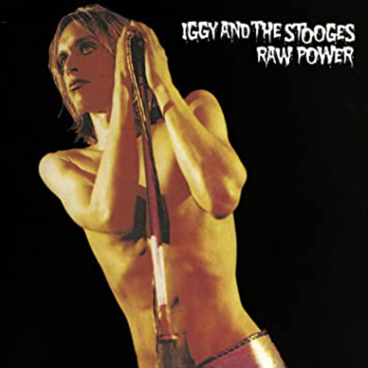 The Stooges, Raw Power