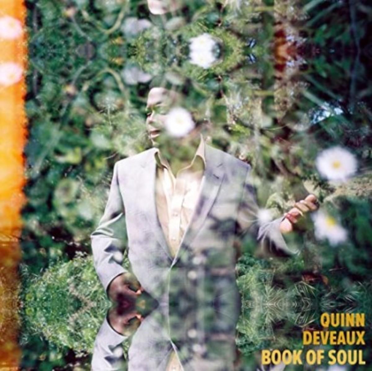 Quinn album cover