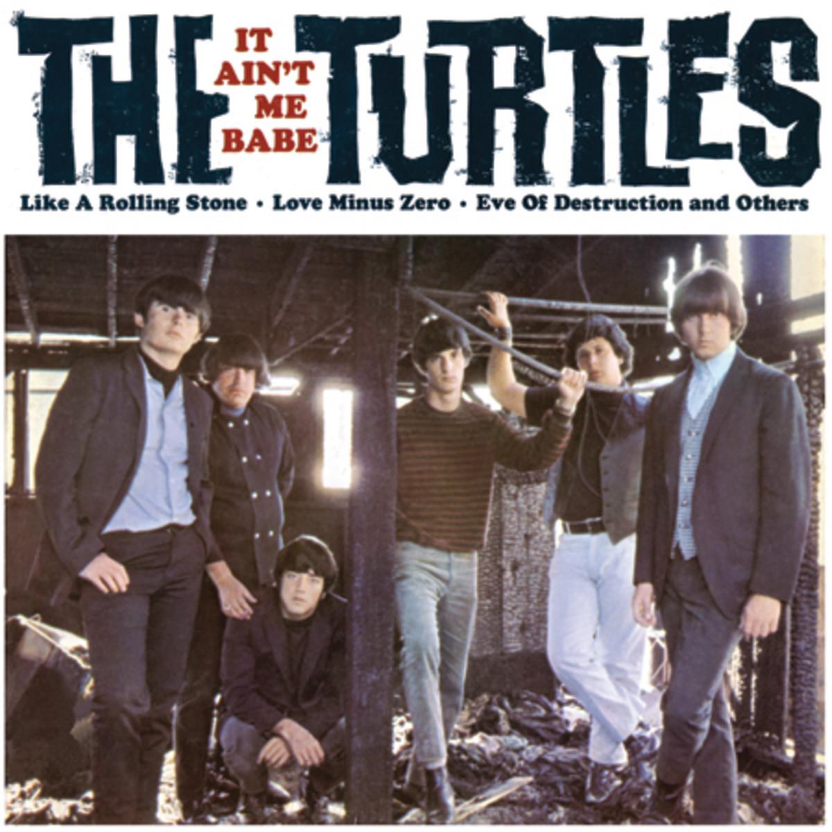 turtlesI T AINT ME
