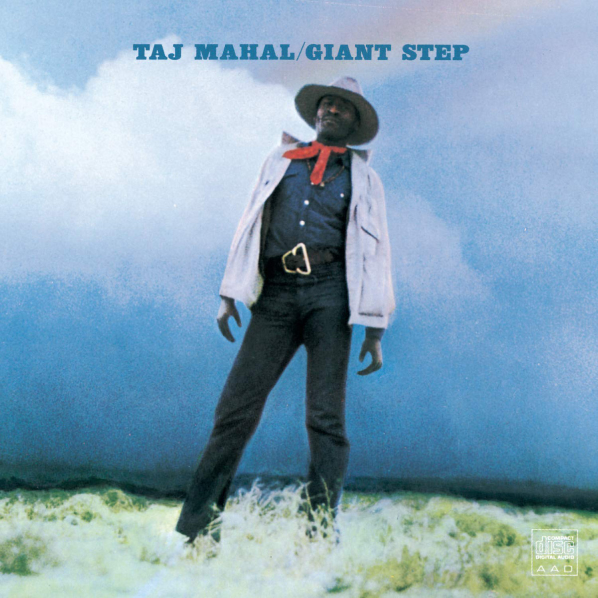 Taj Mahal, Giant Step