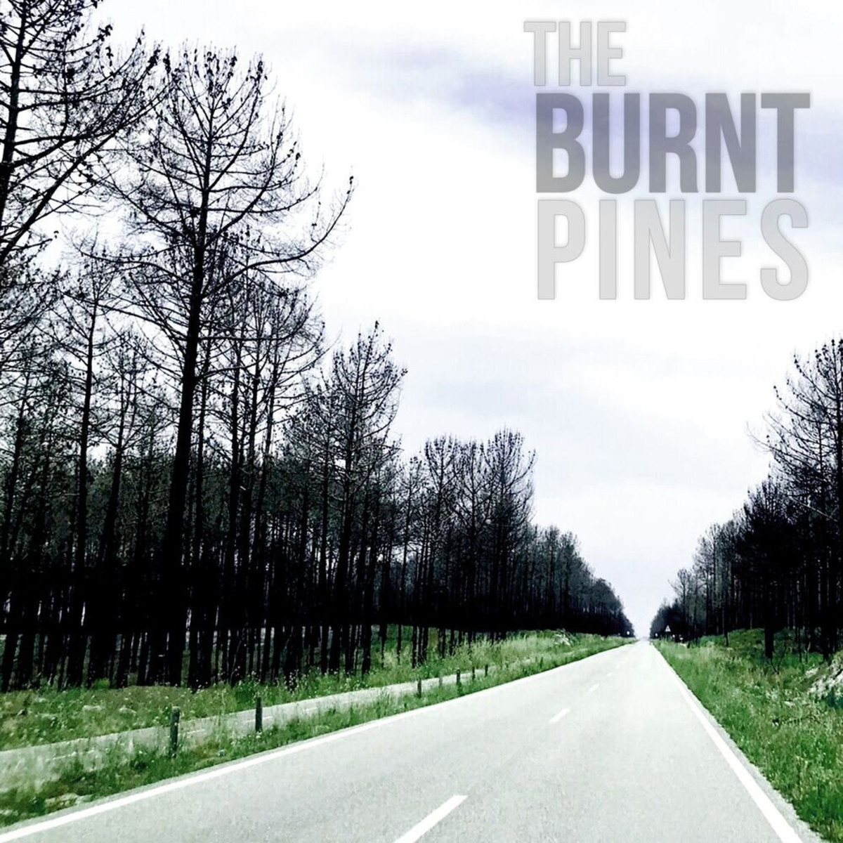 The+Burnt+pines+CD+cover
