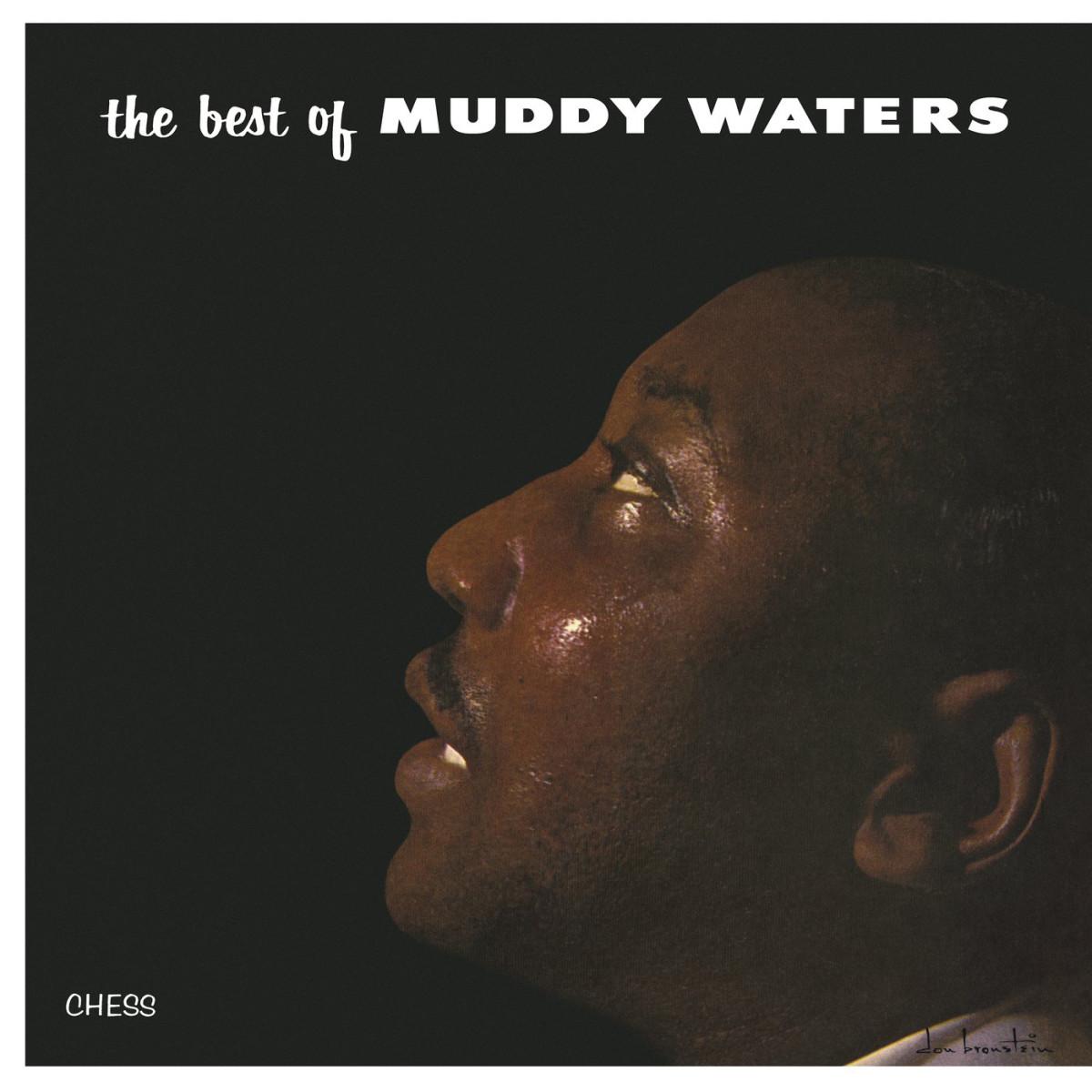 muddy-waters-best-of