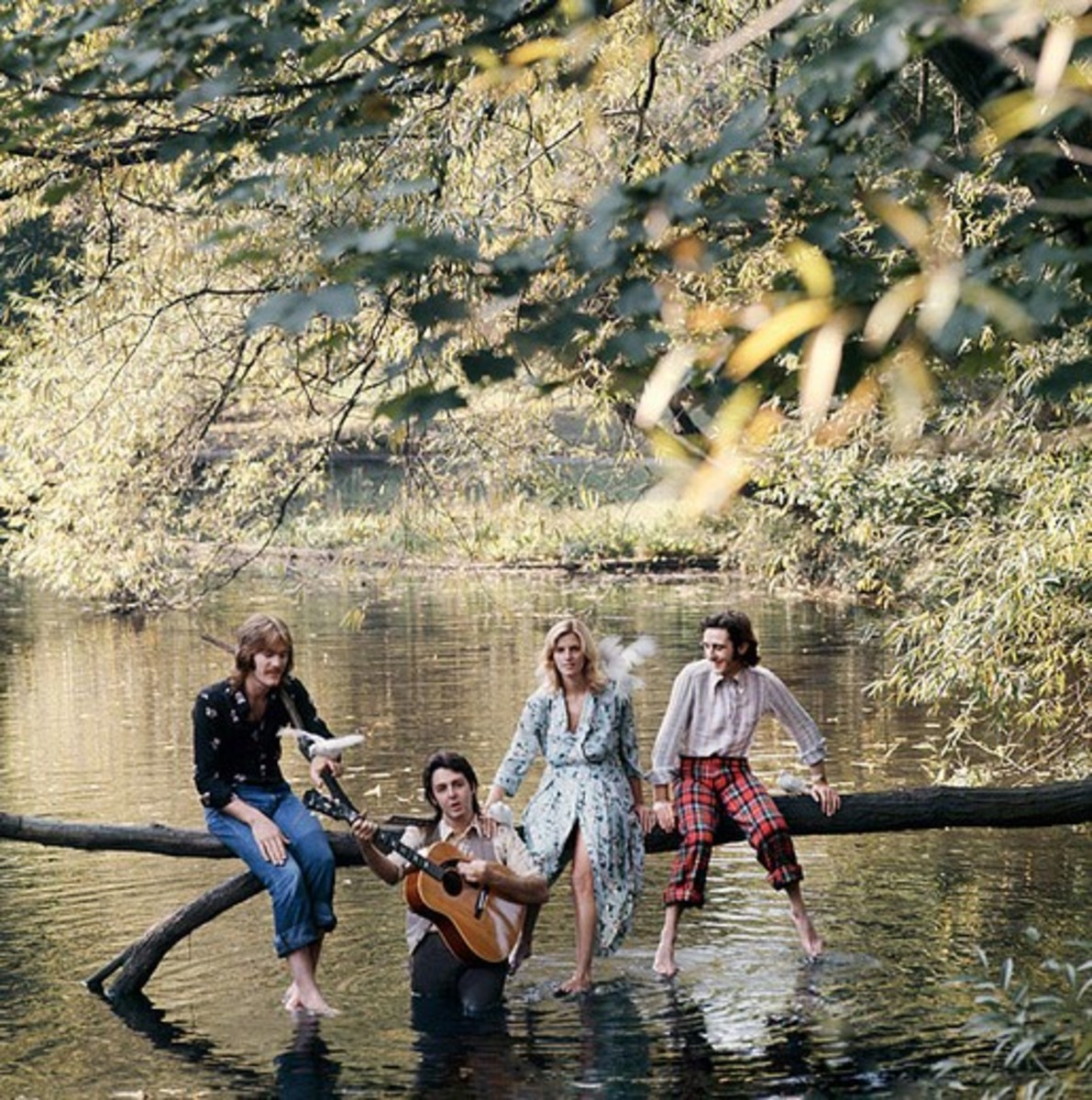 Album cover of Wild Life by Wings on Apple, December 1971