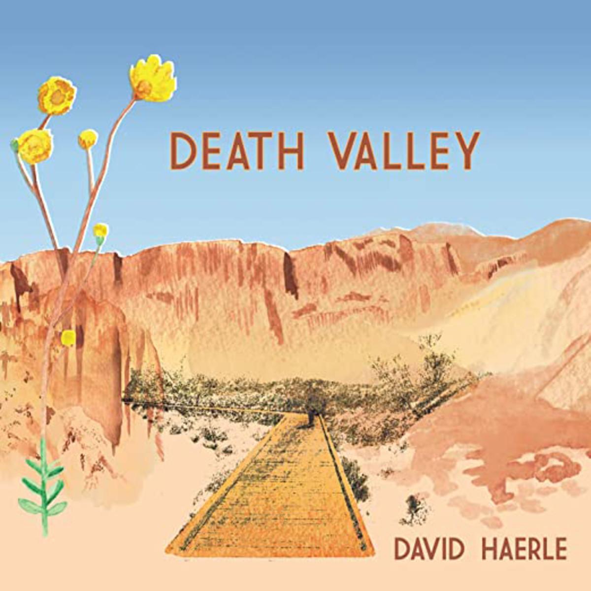 David Haerle